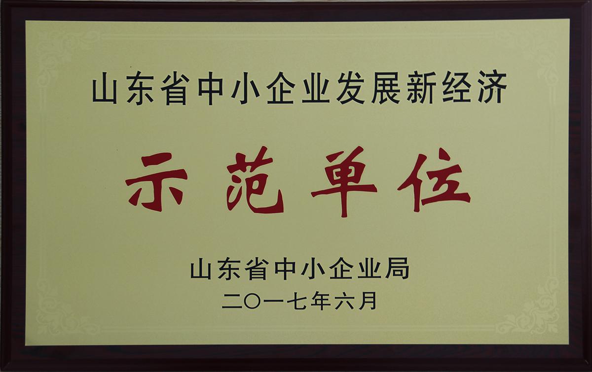 山东省中小企业发展新经济示范单位